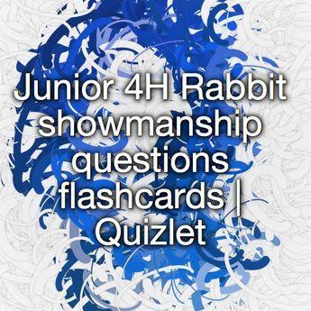 Junior 4h Rabbit Showmanship Questions Flashcards Quizlet