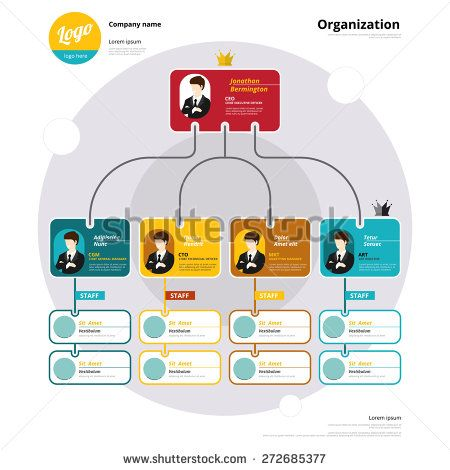 Organization chart, Coporate structure, Flow of organizational - organization chart