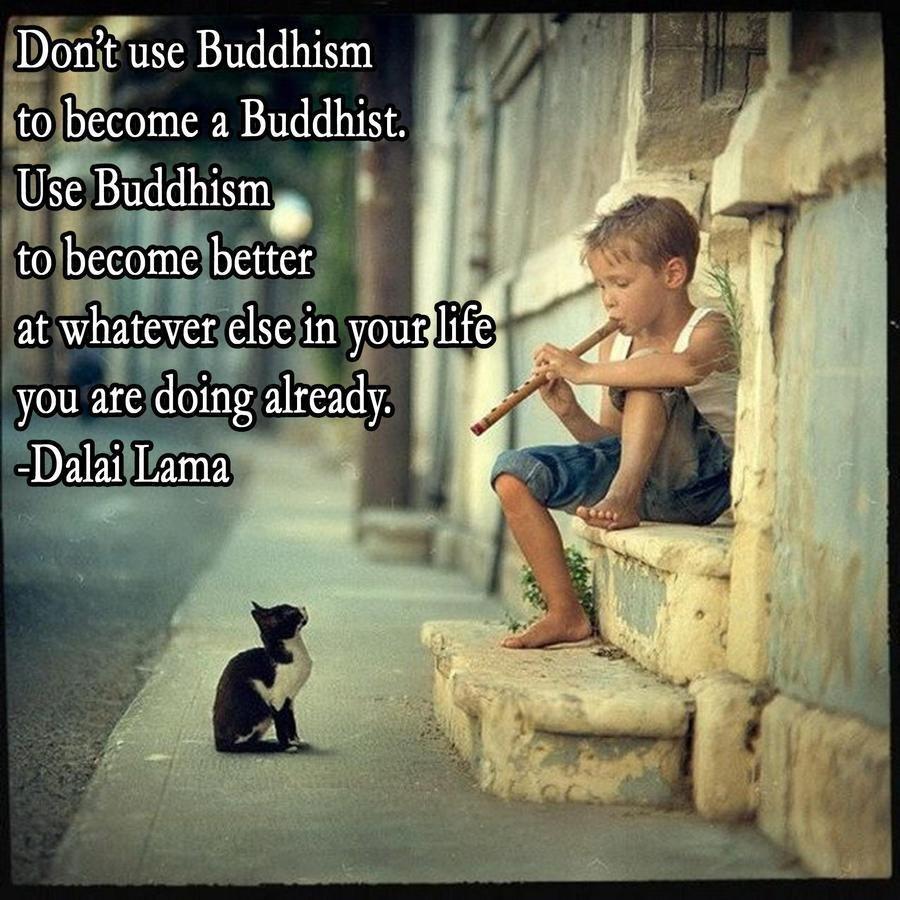 Dalai Lama quote use Buddhism