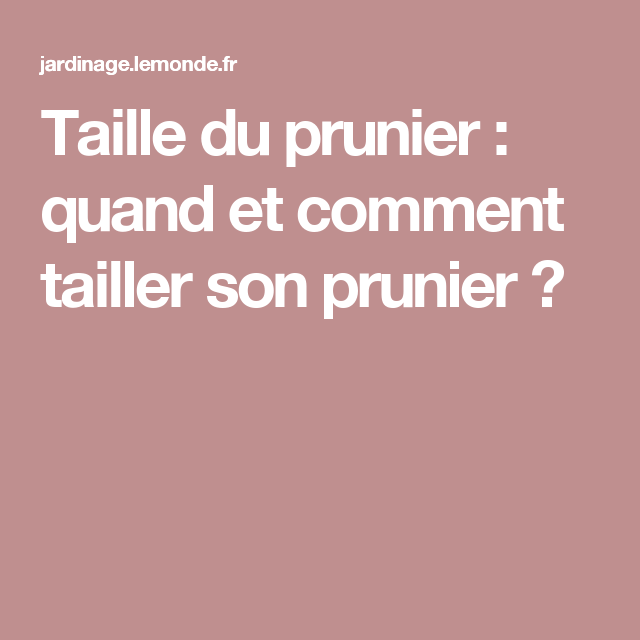 taille du prunier quand et comment tailler son prunier mon jardin pinterest. Black Bedroom Furniture Sets. Home Design Ideas