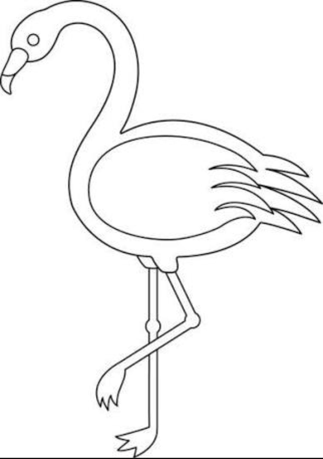 Tropicalpattern Flamingo Coloring Page Flamingo Craft Flamingo Art