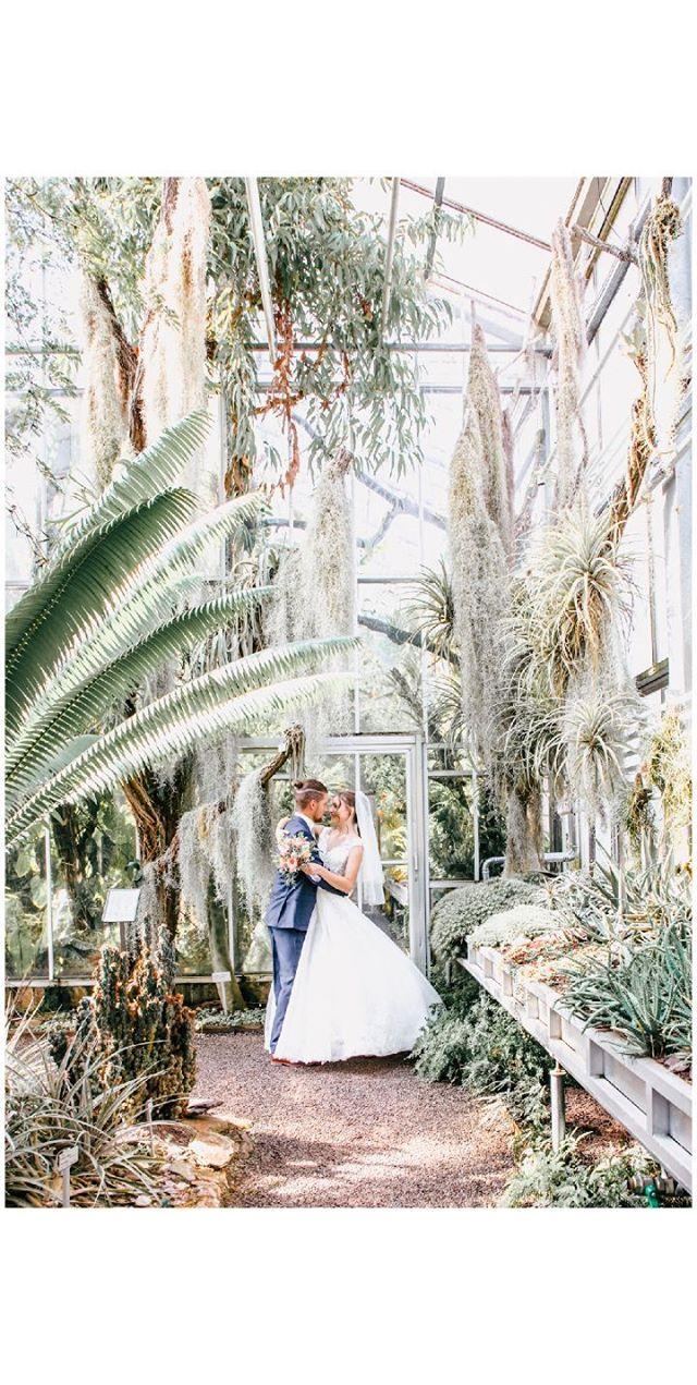 Hochzeitsfotografie Botanischer Garten Tropenhaus St Gallen Hochzeitsfotografie Botanischer Garten Fotografie