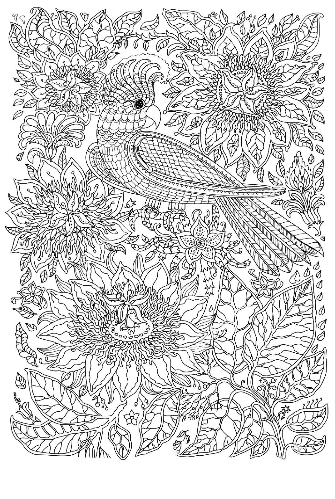 pin by anja burg on coloring pages for adults 2 pinterest