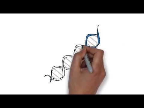 Vídeo sobre la terapia génica, en el que se explica brevemente qué es y los paso que se siguen para su realización.