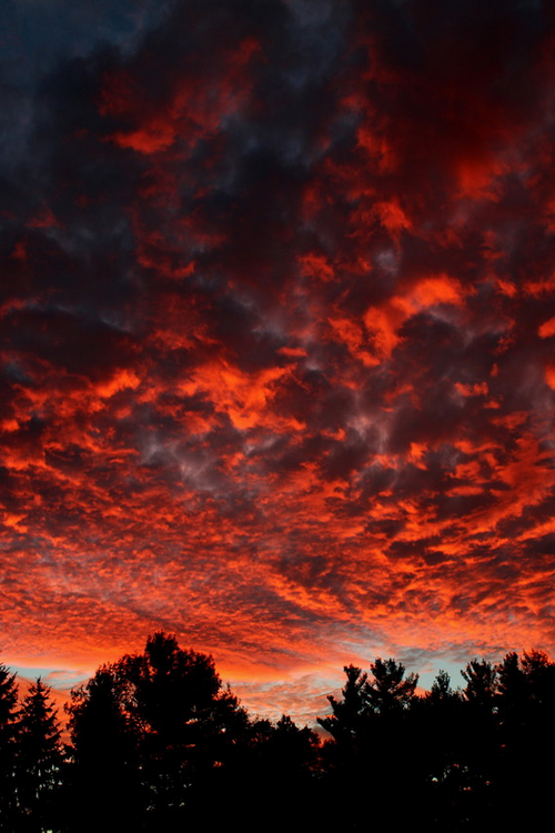6 Tumblr Sky Aesthetic Sunset Pictures Sunset Photography