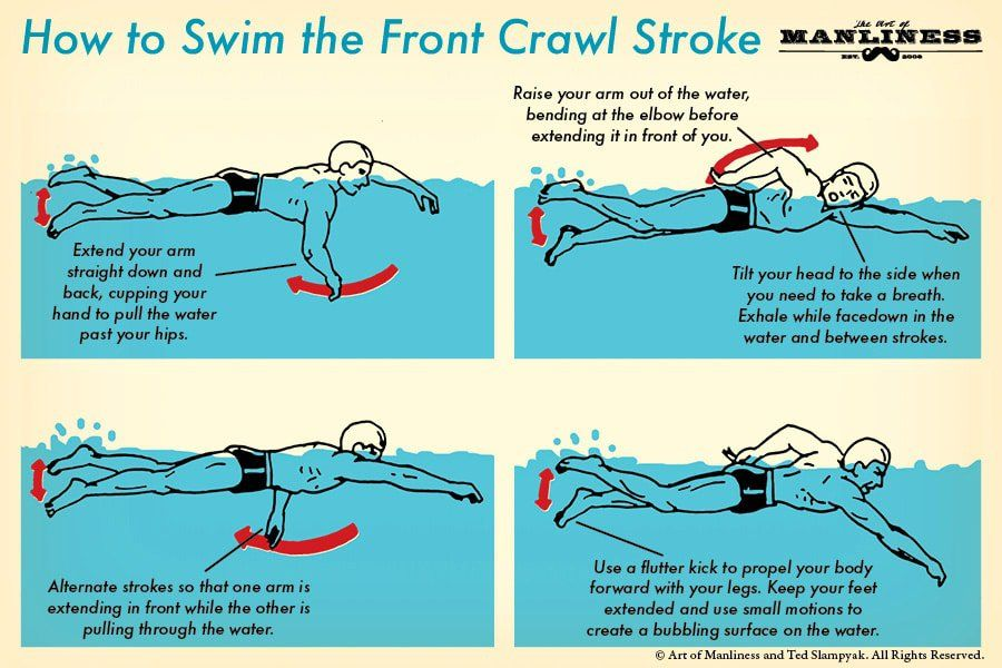 How To Swim The Front Crawl Your 60 Second Guide Sports