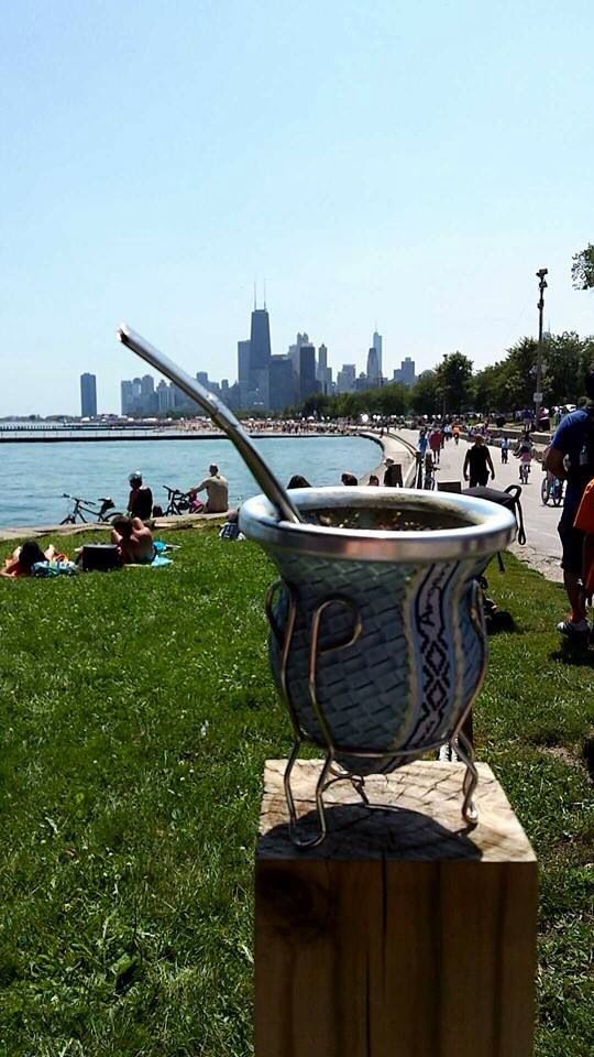 Beautiful Chicago lakefront