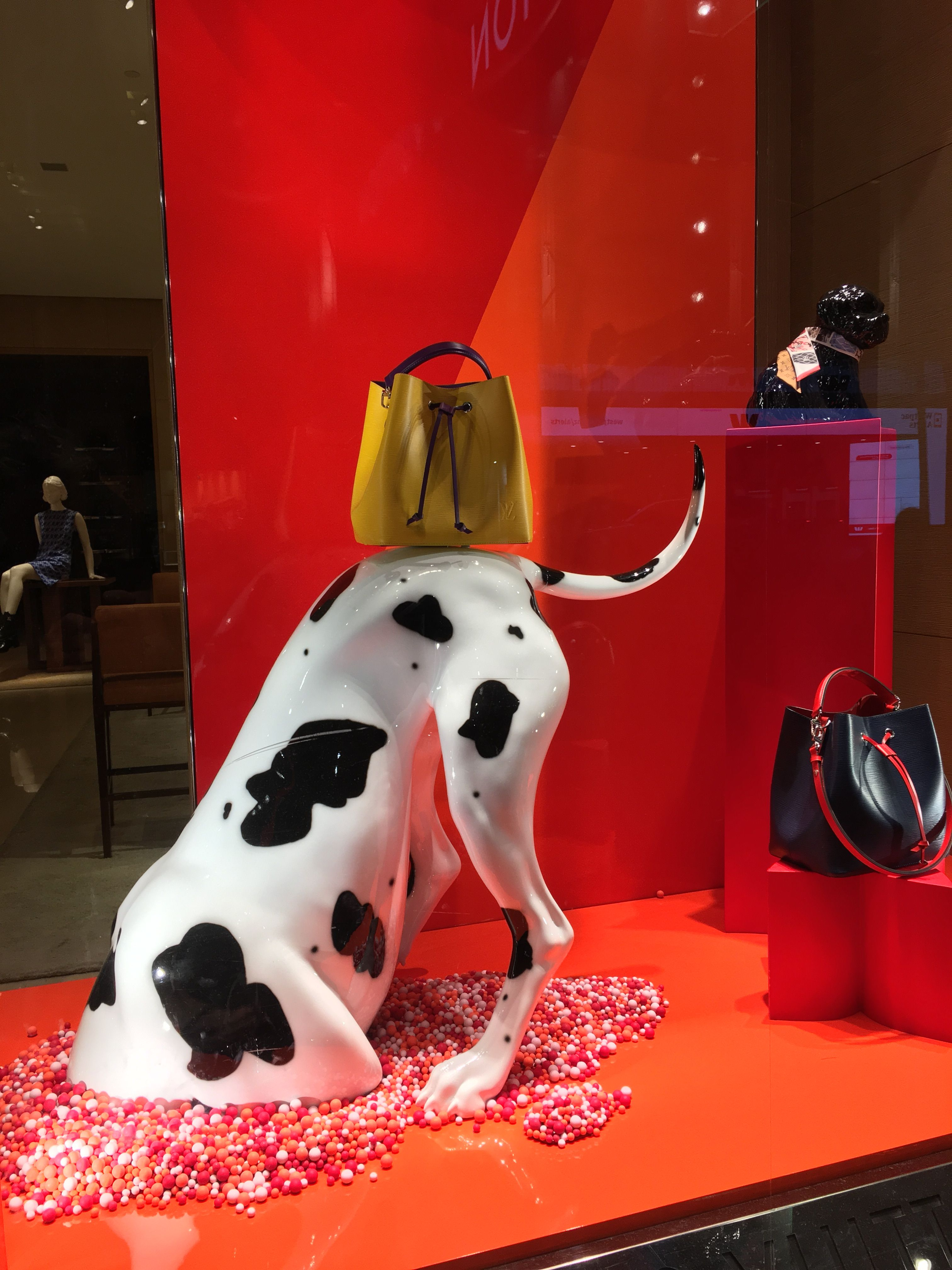 Louis Vuitton Queen Street Auckland Cbd New Zealand The Digging Est Dog The Year Of The Dog Photo Uploaded By Ton Dog Window Window Display Dog Years