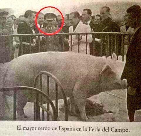 Javier Pérez Andújar (@sanadrianfever)   Twitter