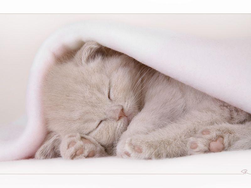 Little princess is sleeping