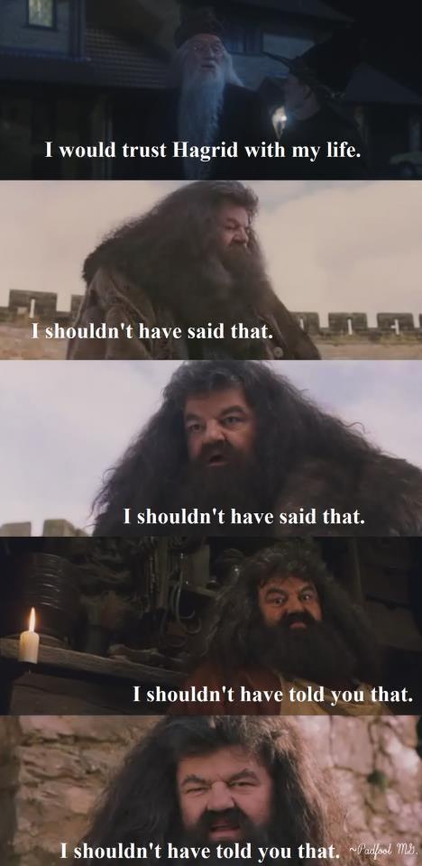 Dumbledore Logic Harry Potter Funny Pictures Dumbledore