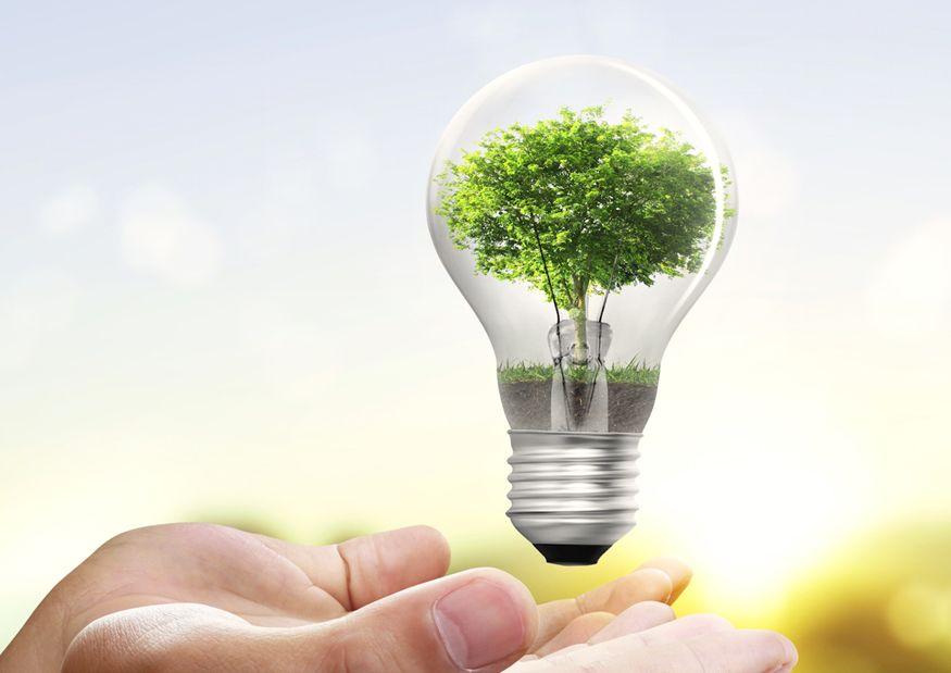 Ahorra energía, ayuda al medio ambiente | El Dictamen en 2020 | Ahorro de energia, Energía renovable, Consumo de energia