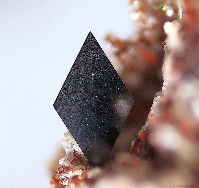 Hematite | #Geology #GeologyPage #Minerals  Chemical Formula: Fe2O3  Locality: Nickenicher Weinberg (Nickenicher Sattelberg), Nickenich, Andernach, Eifel, Rhineland-Palatinate, Germany  Field of View: 2.9 mm  Photo Copyright © Volker Betz  Geology Page www.geologypage.com
