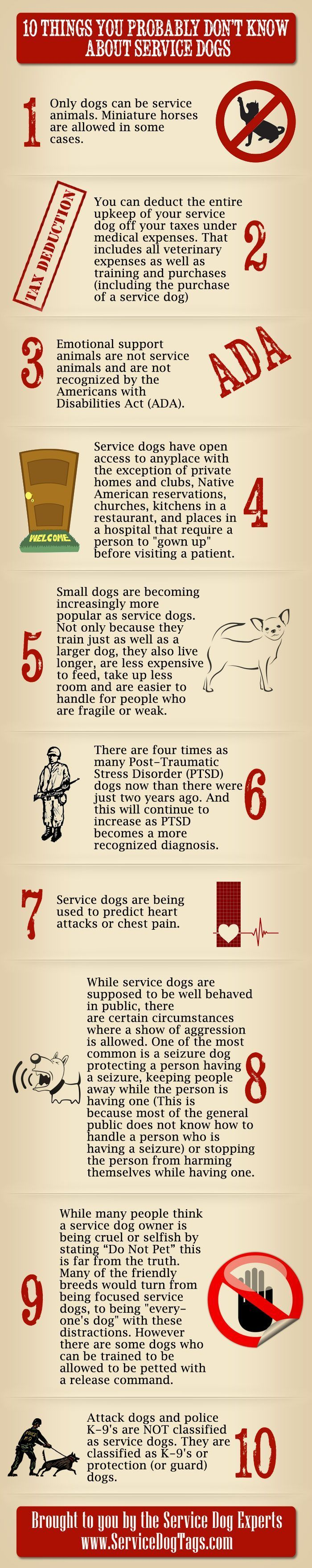 This service dog infographic includes information about ...