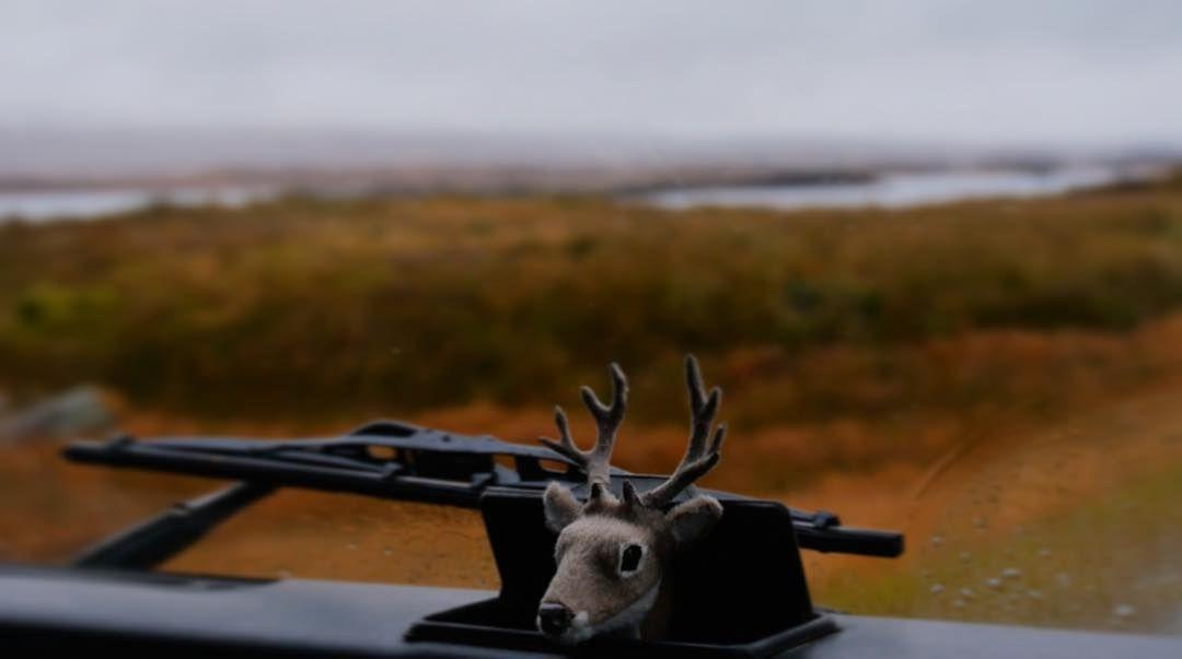 #landrover #defender #landroverdefender #scotland #highlands #autumn #glencoe #deer #antlers #tweed #barbour  by solveigtravendrak #landrover #defender #landroverdefender #scotland #highlands #autumn #glencoe #deer #antlers #tweed #barbour