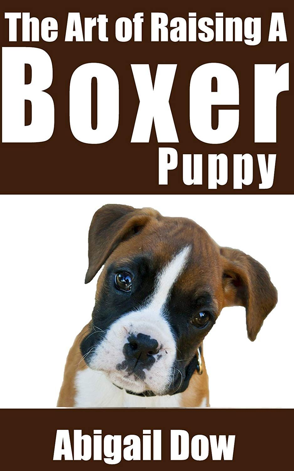 The Art of Raising a BOXER Puppy From Puppyhood to Adult
