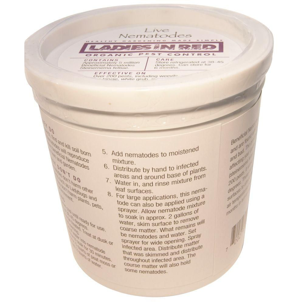 Natural pest control with beneficial nematodes ladies in for Beneficial nematodes for termites