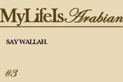 Pin By Diana Farah On Arab Life Arabic Memes Arabic Jokes Arab Problems