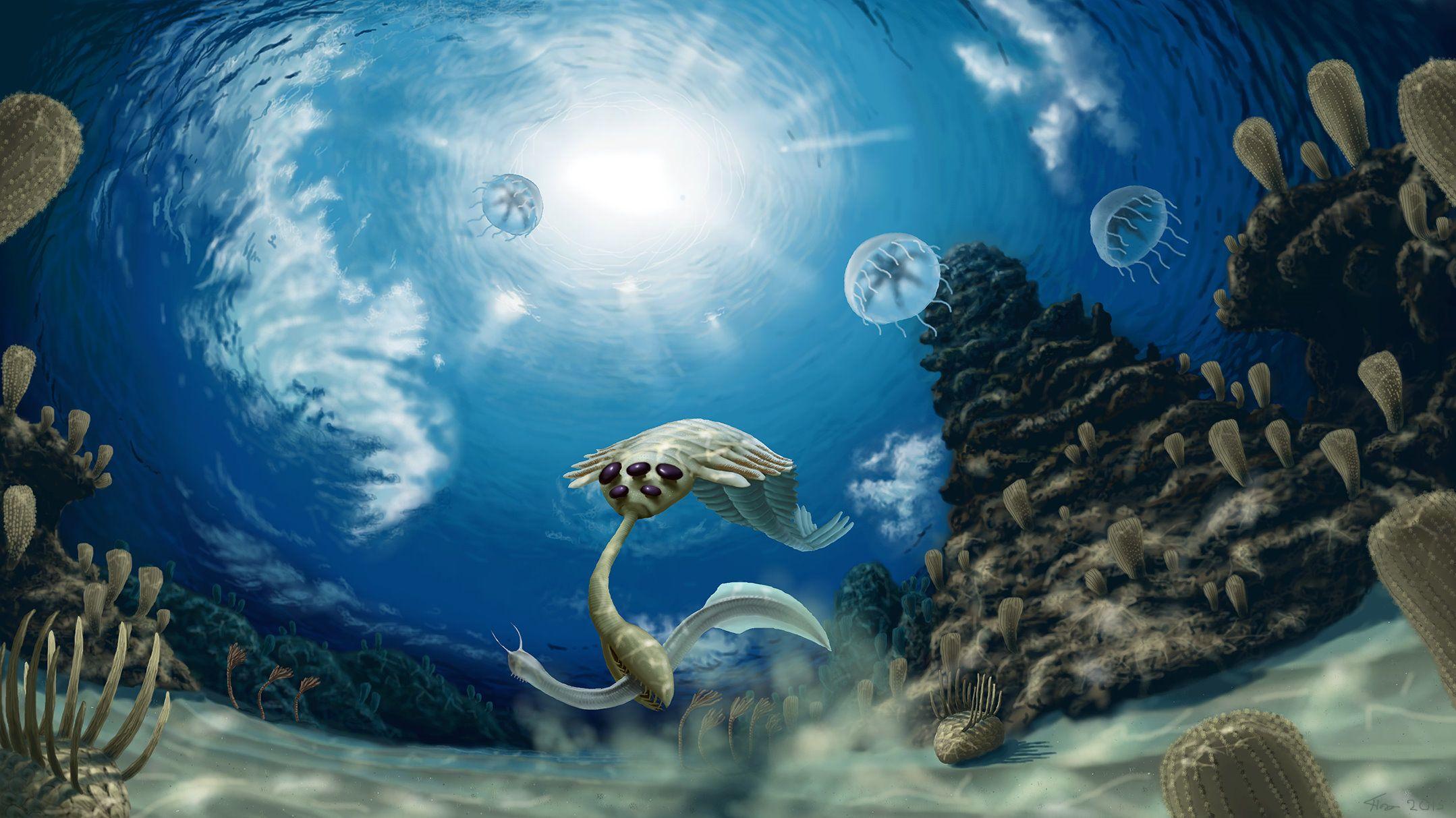 Resultado de imagem para 252 mya art  cambrian