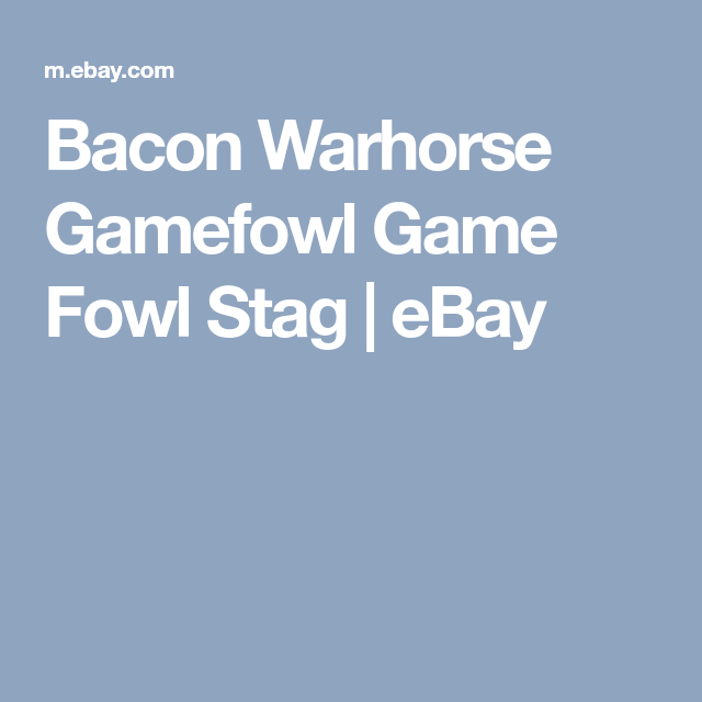 Bacon Warhorse Gamefowl Game Fowl Stag | eBay | Stuff to buy