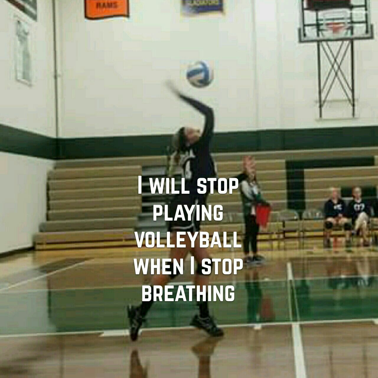 Truth Volleyball Lifestyle Volleyball In 2020 Volleyball Quotes Volleyball Inspiration Volleyball
