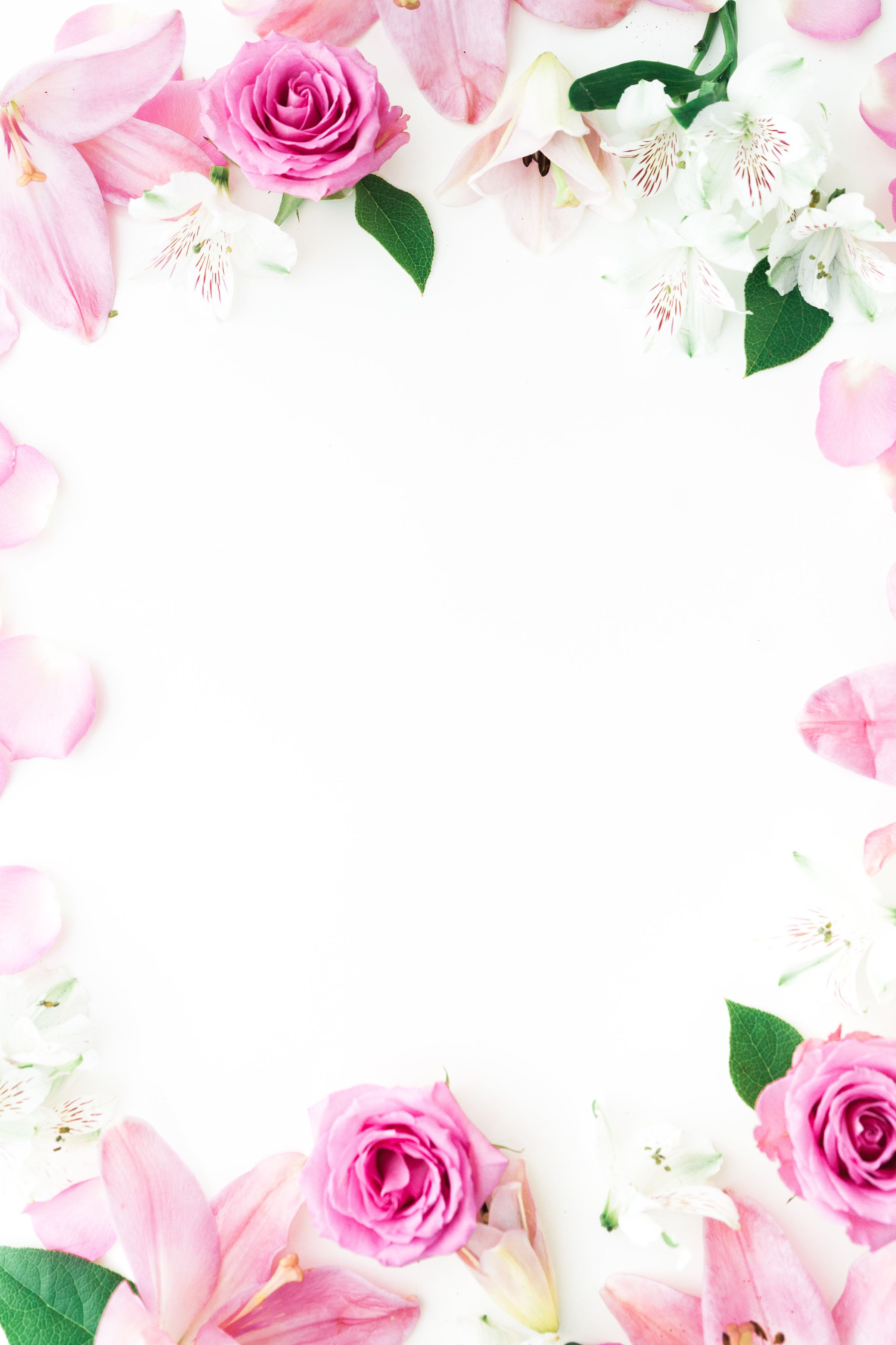 Pink Flower Border If You Love Pink Flowers Then This Is A Perfect Floral Frame To Download And Use For All Your Creative Projects