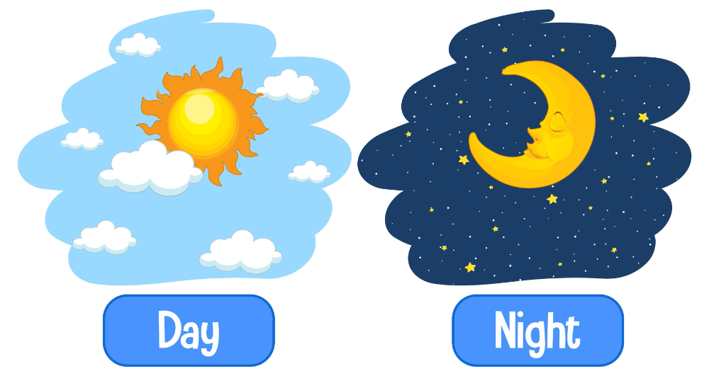 Opposite Adjectives Words With Day And Night In 2021 Adjective Words Adjectives Vector Art