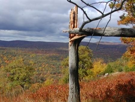 The autumn leaves, on the Appalachian Trail, Bear Mountain, looking south-west, October 22, 2005    #ExpediaWanderlust