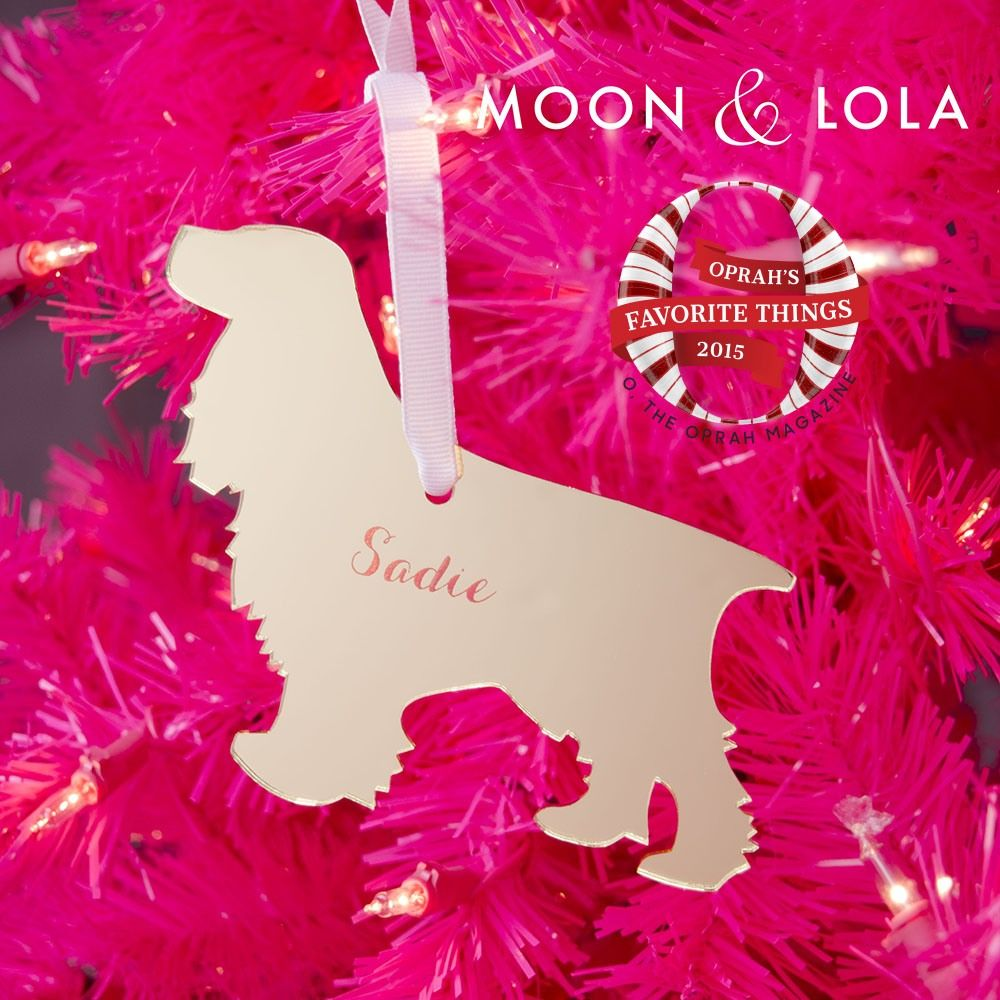 Personalized pet ornament - Moon And Lola Personalized Pet Ornament Oprah S Favorite Things 2015
