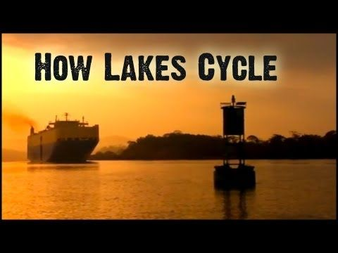 ▶ How Lakes Cycle: Untamed Science - YouTube