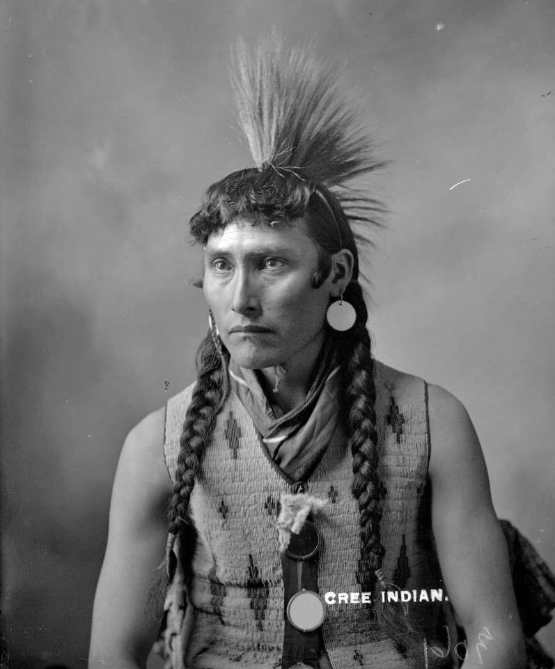 Cree Indian Plains Indian Hairstyles Native American