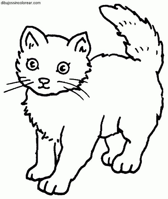 siluetas de gatos para imprimir - Buscar con Google   Cat coloring ...