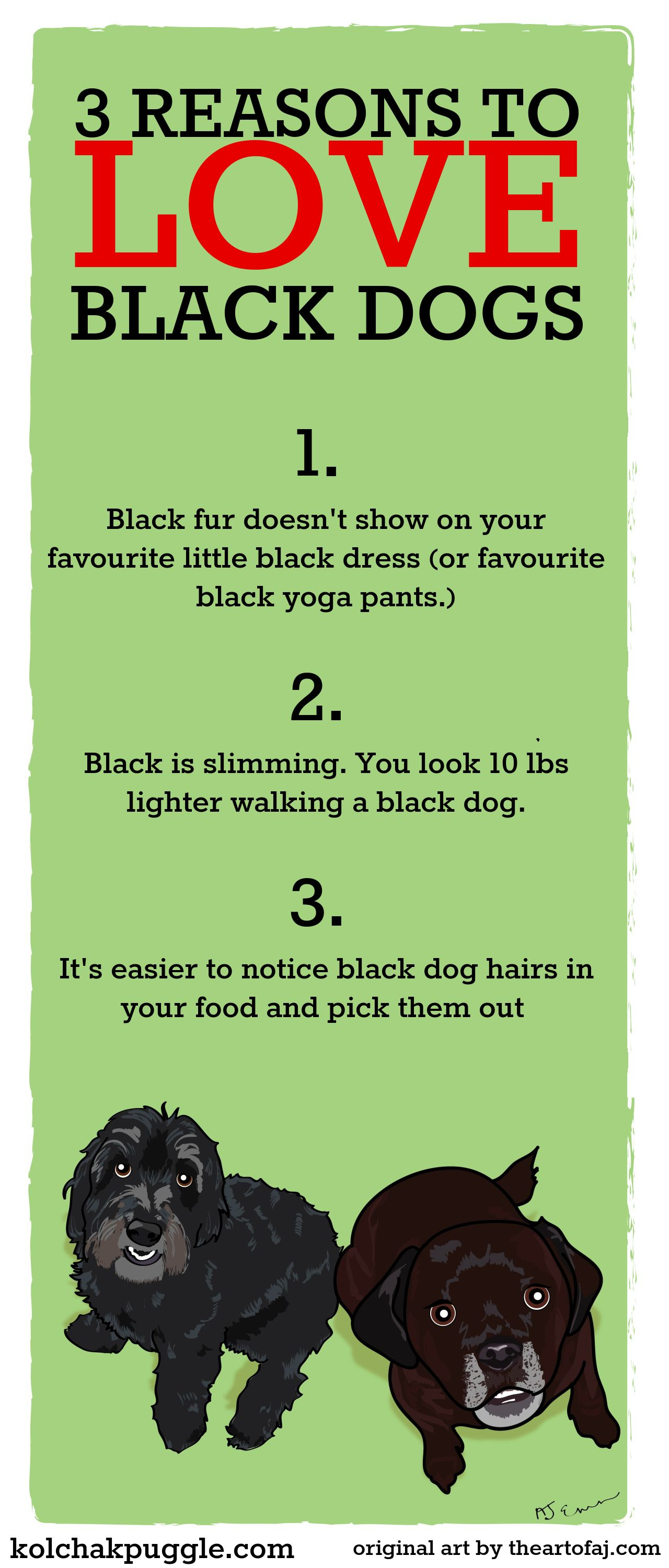 BlackDogDay Diy dog stuff, Black dog day, Dog blog