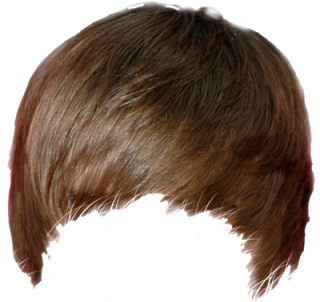 Part01 Real Hair Png Zip File Free Download Men Hair Pngs For Picsart Or Photoshop Hd Transparent Hair Png Editorbro Download Hair Hair Png Hair Styles