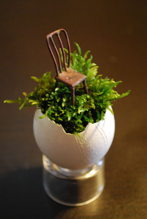 Love this tiny chair in the ferns--in an eggshell, no less!
