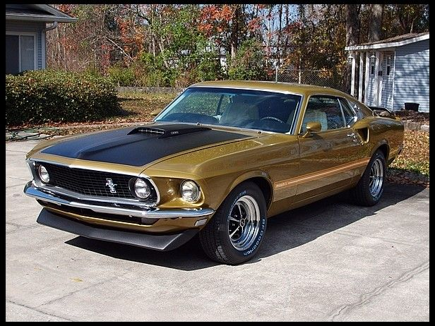 G220 1969 Ford Mustang Mach 1 390 Ci Automatic Photo 1 Mustang Mach 1 Ford Mustang Muscle Cars