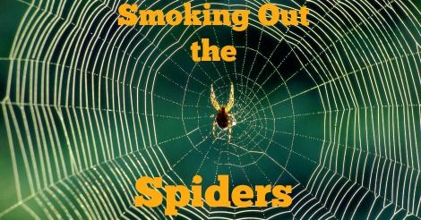 4d18253c9f231c90366cba6d41ffc2ae - How To Get Rid Of Spiders In Side Mirror