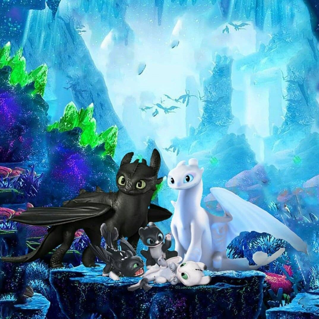 The Fury Family How Train Your Dragon How To Train Your Dragon How To Train Dragon