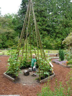 Bamboo Tee Pee -- Planet Silas: Anna Smith Children\'s Garden   AE ...