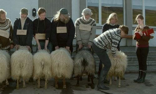 Rams, (Hrútar), Director/Writer Grimur Hákonarson, Iceland, 2015, #filmfestdc Tough environment, tough events, tough story. Even the tough can have feelings, Two estranged brothers/neighbors/shepherds lose their flocks but remember their love. Moving story but a bit bleak. Friday, April 15th at 9:00 PM and Saturday, April 16th at4:00 PM. http://cohenmedia.net/films/rams
