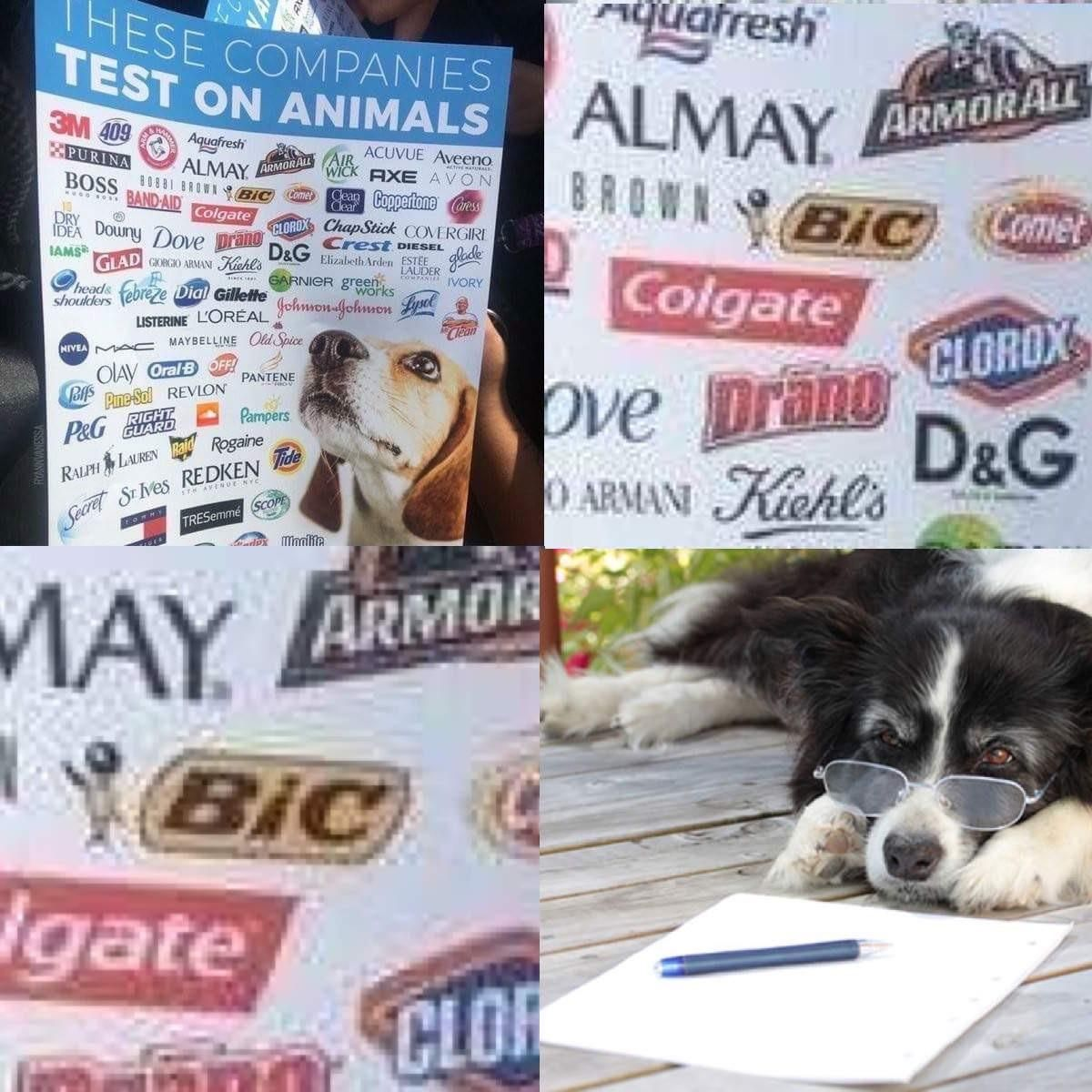 These Companies Test On Animals Haha Funny Memes Funny Memes