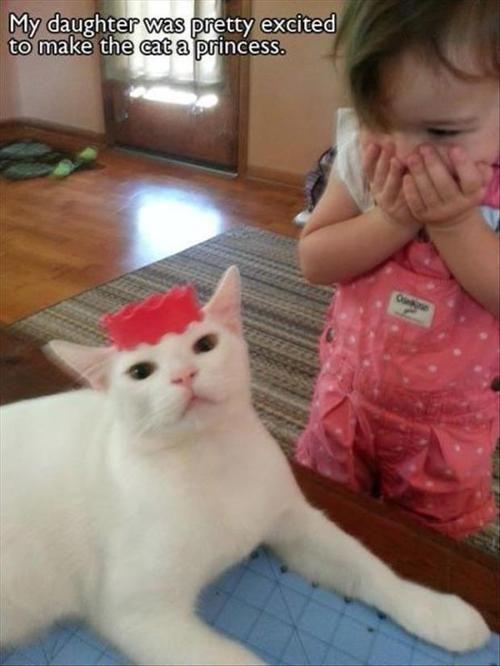 Ha convertido el gato en princesa