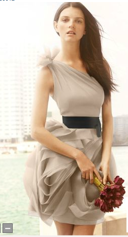 Vera Wang One Shoulder Champagne Dress