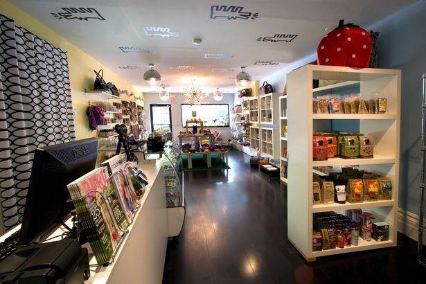Dog Boutique Zoomagazin Interer Magaziny