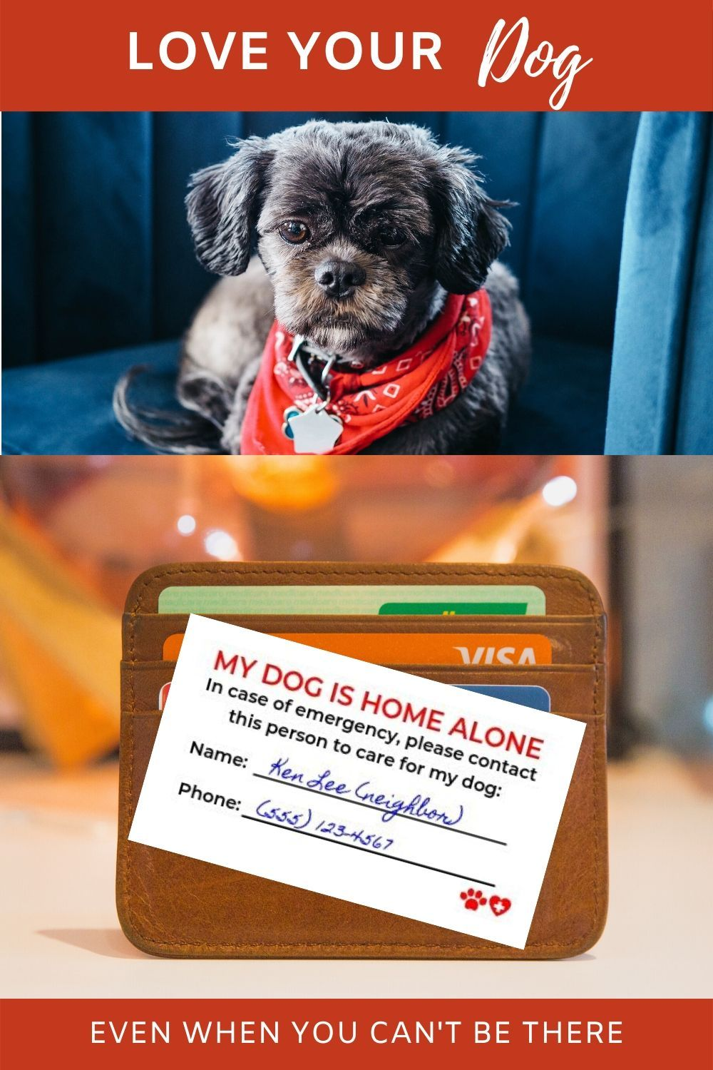 Pet Alert Dog Home Alone Emergency Card Digital Download Printable In 2020 Valentines Day Dog Dogs Your Dog
