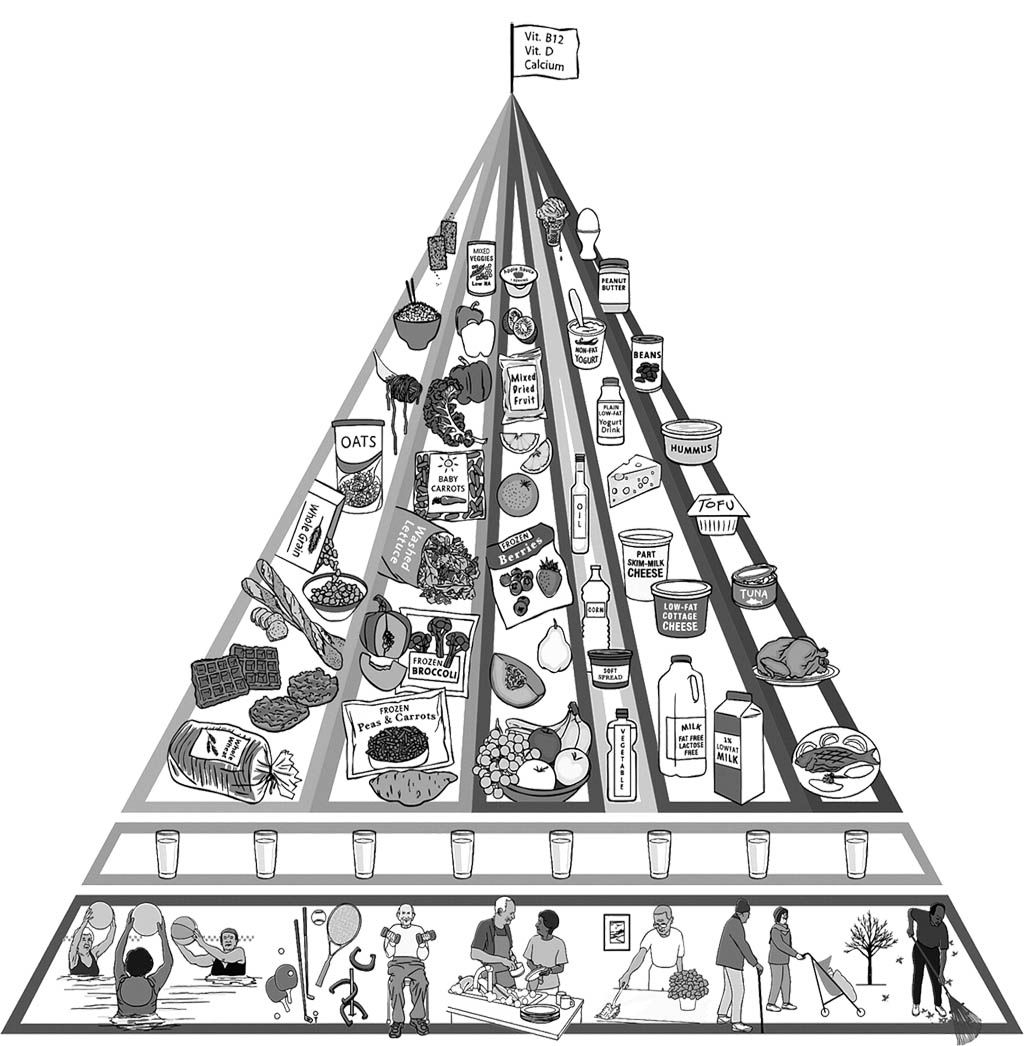 Modified Food Pyramid For Older Adults Coloring Page For