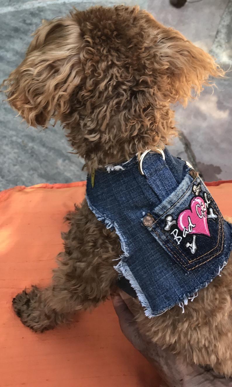 Denim Dog Vest Dog Jacket Dog Harnessdenim Dog Vest Bad Girl