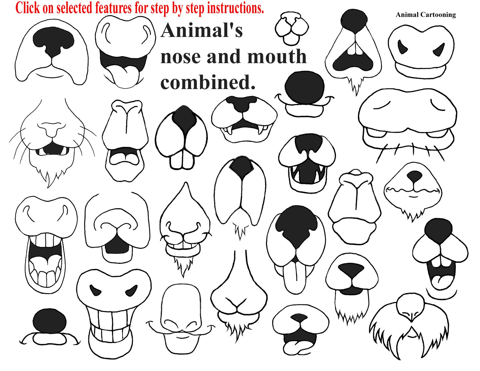 Cute Animal Noses And How To