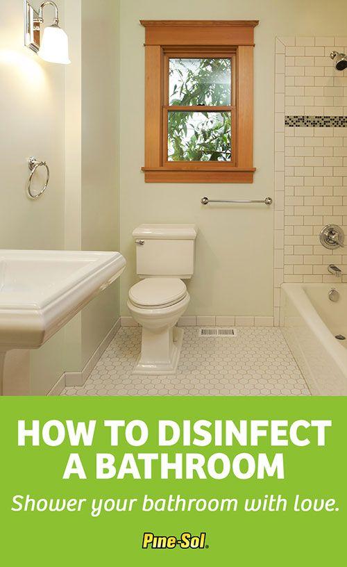 Superb Pine Sol Is Tough On Soap Scum Shower Mildew And Toilet Ibusinesslaw Wood Chair Design Ideas Ibusinesslaworg