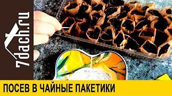 7dach.ru - YouTube